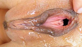 Primer mojado vaginal del agujero vaginal.